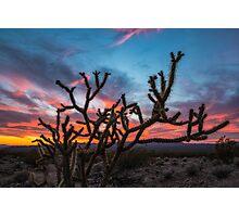 Mojave Desert Sunset Photographic Print