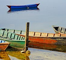 Boats of Many Colours by Harry Oldmeadow