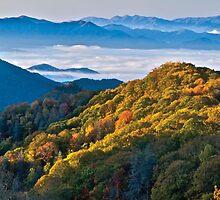 Forest Ridge NC MountainTop Land Liquidation by forestridgenc