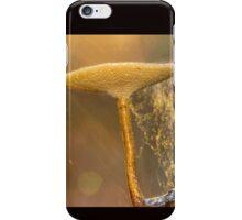 Glorious Fungi iPhone Case/Skin