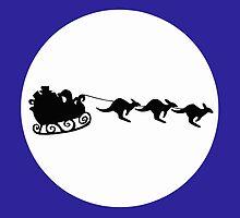 Aussie Christmas by harrisrose