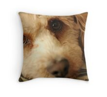 Monty the Monster Throw Pillow