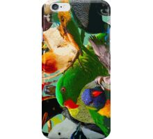 Birds of a Different Feather iPhone Case/Skin