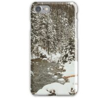 Bridge In Snow iPhone Case/Skin