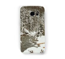 Bridge In Snow Samsung Galaxy Case/Skin