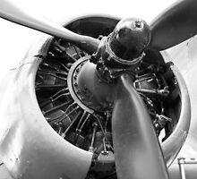 Douglas Dakota engine by Robert Gipson