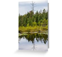 Mirror Mirror on the Bog Greeting Card