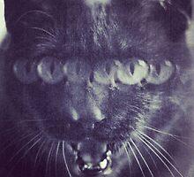 Meow Melts by sanny12