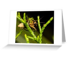 Firefly (1) Greeting Card