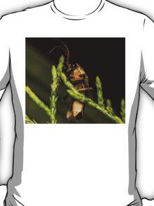 Firefly (2) T-Shirt