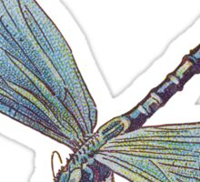 Blue Dragonfly Sticker