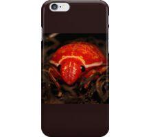 Mysterous Orange Beetle iPhone Case/Skin