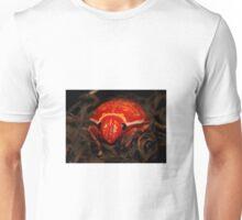 Mysterous Orange Beetle Unisex T-Shirt