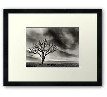 tree thunder sky clouds Framed Print