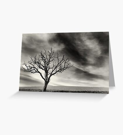 tree thunder sky clouds Greeting Card