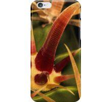 Cacti Hooks iPhone Case/Skin