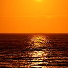 Low Sun on Sea by Steve
