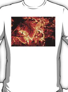 Flaming Leaves T-Shirt