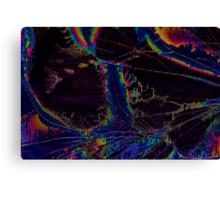 Broken LCD Screen Canvas Print