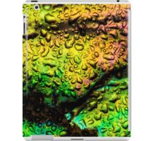 Intense Iridescence iPad Case/Skin