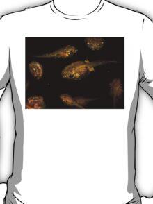 Tropical Tadpole Gathering T-Shirt