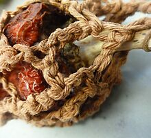 Crocheted Decayed Pepper  by Abigail Littlewood
