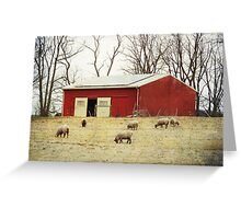 Sheep Farm Greeting Card