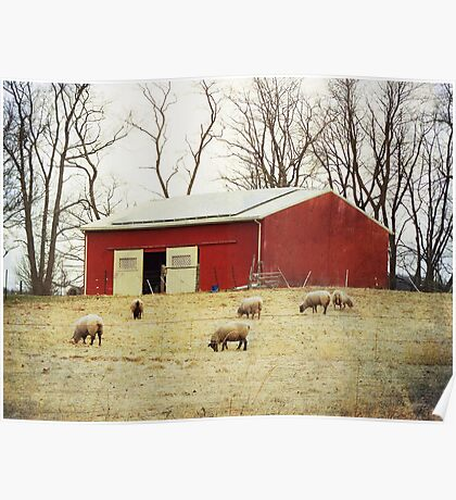 Sheep Farm Poster