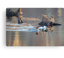 Sunrise In The Swamp Canvas Print