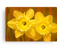 Daffodils on Fire Canvas Print