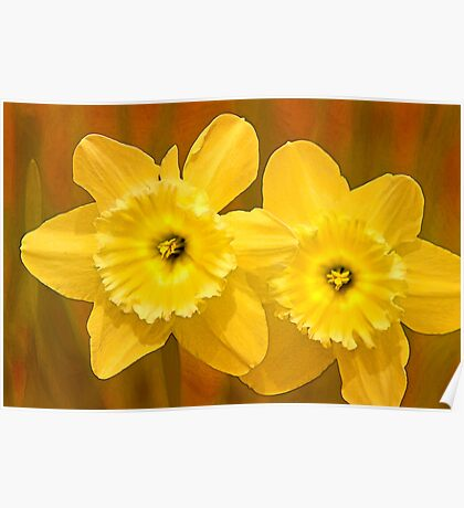 Daffodils on Fire Poster