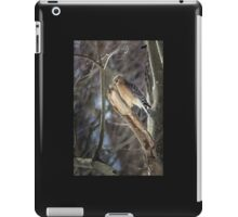 Portrait of a Red-Shouldered Hawk iPad Case/Skin