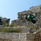 Roman Ruin, Nice by Trish Meyer