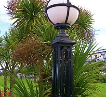 Lamp on the Downs, Babbacombe by lezvee
