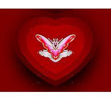Love Zone Photographic Print