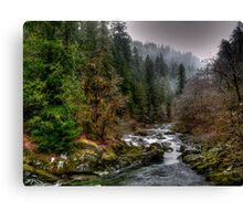 Up The River Canvas Print