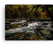 The Big Rush Canvas Print