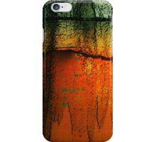 Burnt Caramel iPhone Case/Skin