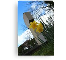 Death and Daffodils Canvas Print