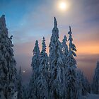 Moonshine by Nordic-Photo