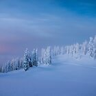 Silent Night by Nordic-Photo