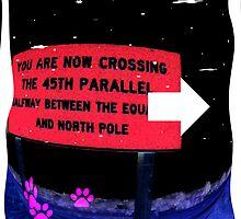 Crossing by Brian Blaine