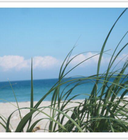 Beach Life, FL Sticker