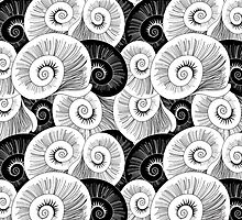 graphic pattern of shells  by Tanor