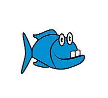 funny fish Photographic Print