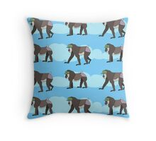 A Walk in The Clouds... Throw Pillow