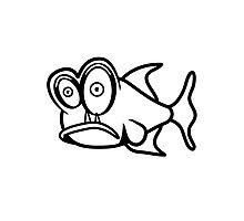 Piranha fish Photographic Print