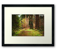 Ireland - Nature - Ravensdale Framed Print