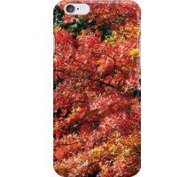 autumn leafs iPhone Case/Skin