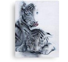 baby tigers Canvas Print